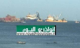 الصورة توضح عملية  رسو وتفريغ لحمولة إحدى السفن التركية نهارا جهارا داخل الاحواض العائمة